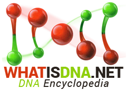 DNA Encyclopedia
