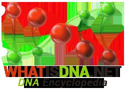 DNA Encyclopedia
